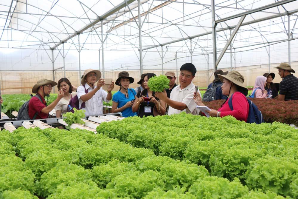 Ý tưởng kinh doanh công viên nông trại