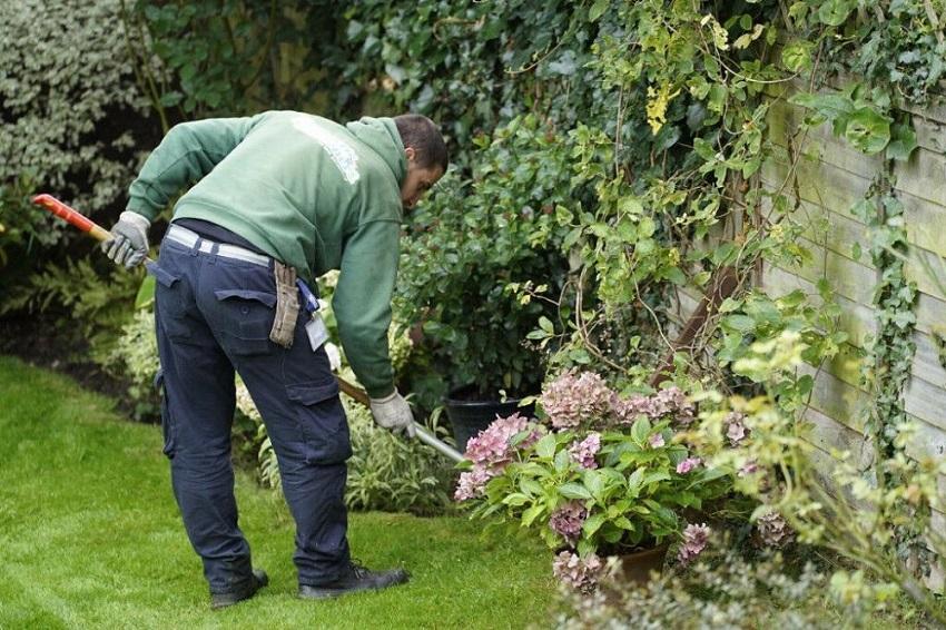 Ý tưởng kinh doanh chăm sóc sân vườn